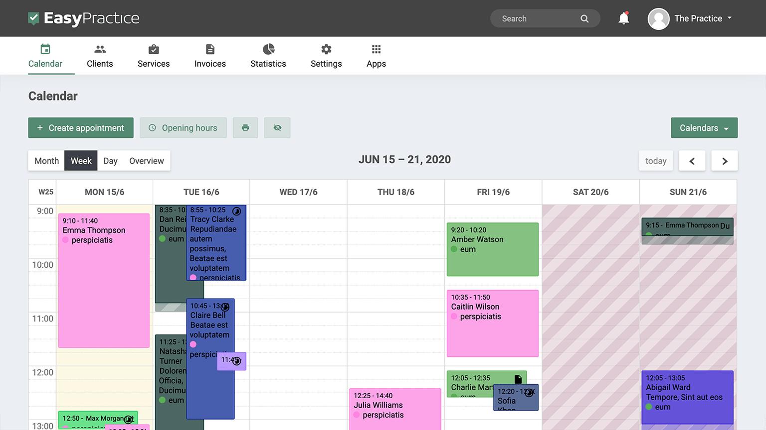 Screenshot of EasyPractice calendar